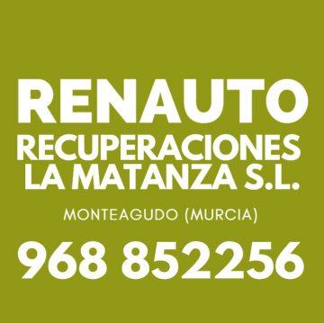 RENAUTO - RECUPERACIONES LA MATANZA SL