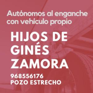 HIJOS DE GINES ZAMORA SL