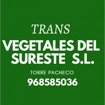 Transvegetales Del Sureste